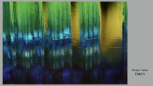 Foto's voor Galerie Abstracte Fotografie.006